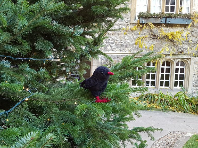 A crochet chough in a Christmas tree in the Front Quad at St Edmund Hall