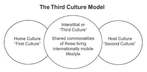 The Third Culture Model